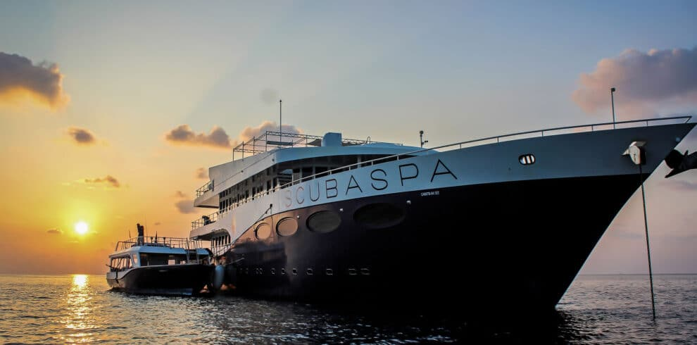 scubaspa-maldives-yacht-bow