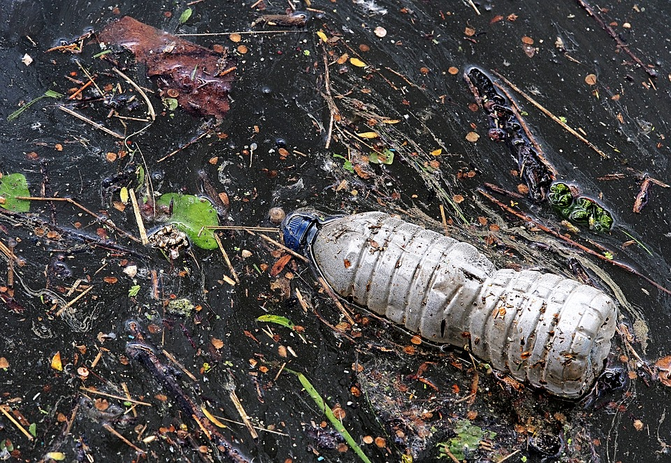 Plastic bottles in the water