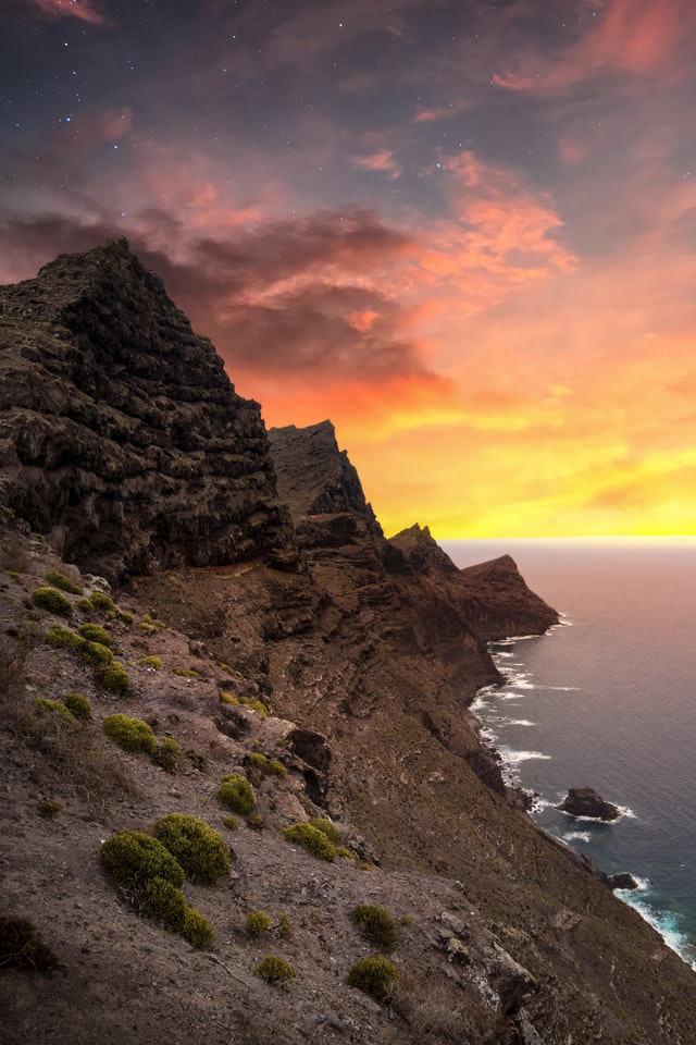 canery island