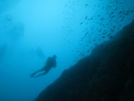 A scuba diver in Spanish waters