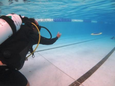 Under Water Summer Games